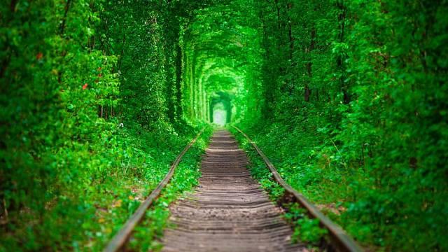 Tři kilometry dlouhá procházka v obklopení zelené.