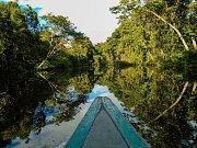 Amazonie - největší deštný prales na světě. Ale na jak dlouho?
