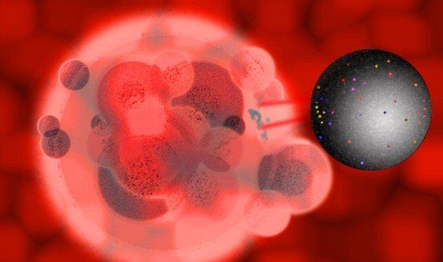 Vědci vyvinuli nano- a mikročástice. Mohou usnadnit léčbu a zrychlit diagnózu