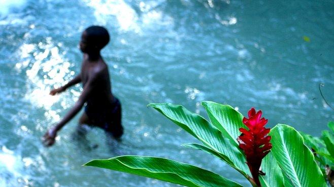 KURZ FOTOGRAFOVÁNÍ: Magicky banální trik, který změní vše – harmonické pozadí