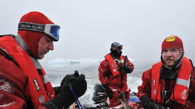 ROZHOVOR: Češi v Antarktidě letos nasbírali přes 1000 parazitů