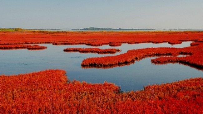 Podzimní Hokkaido: moře červených korálů i zasněžené vulkány