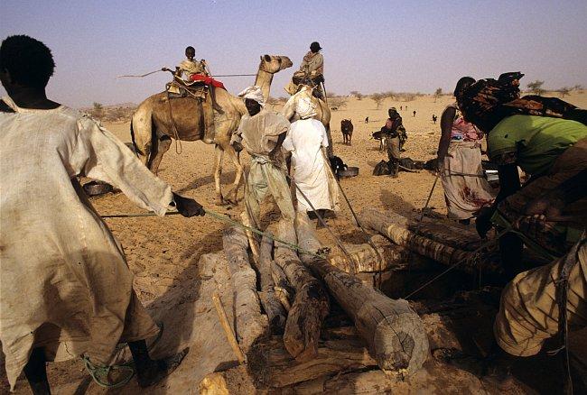 Dárfúr je sužován nejen suchem, ale i nestabilní politickou situací.