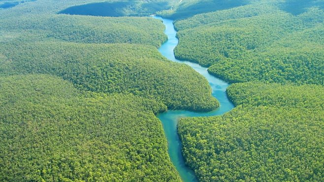 Vegetace v severních šířkách je kvůli skleníkovému efektu bujnější. Jak je to možné?