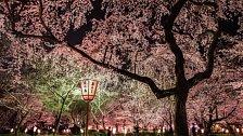 OBRAZEM: Zahrady celého světa zahalené tmou. Exkluzivně pro NG