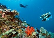 Potápěč zkoumá nedaleko indonéského souostroví Raja Ampat (vlevo) mělkovodní část svahu podmořské hory obalenou korály; dálkově ovládané vozítko může prozkoumat svahy ve větší hloubce.