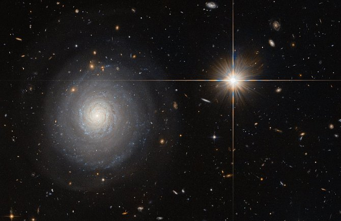 Hubbleův teleskop zachytil galaxii označovanou jako MCG+07-33-027, která leží 300 miliónů světelných let od Země. V tuto chvíli se na ní rodí hvězdy jako o závod!