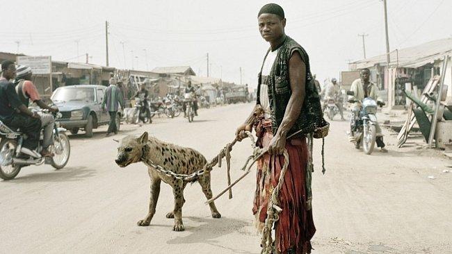 OBRAZEM: Tajemní krotitelé zvířat s hyenami na vodítku