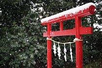 Pokud by však husté sněžení pokračovalo, nejspíš by hrozil dopravní kolaps.