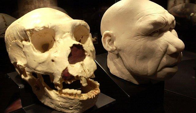 Hledání společného předka Homo sapiens a neandrtálců zatím vychází naprázdno