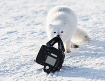 5. místo: Nikdy, nikdy nenechávejte fotoaparát o samotě. (Michou Von Beschwitz)