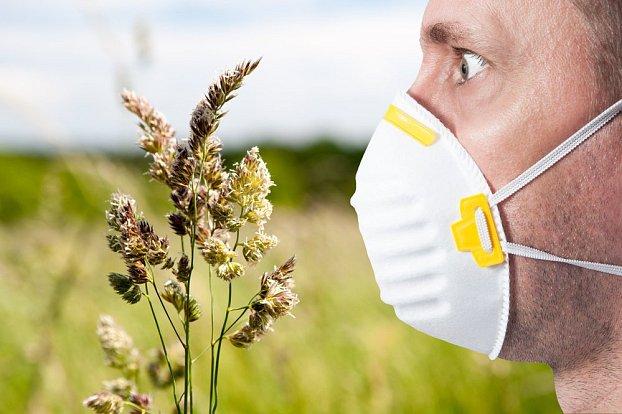 Zjištění vědců: Jak změna klimatu ovlivňuje naše alergie