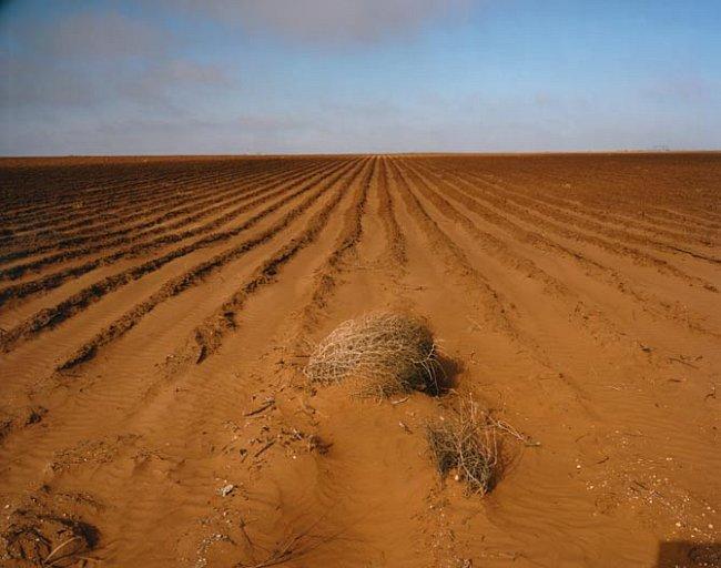 Texas trpí obrovským suchem.