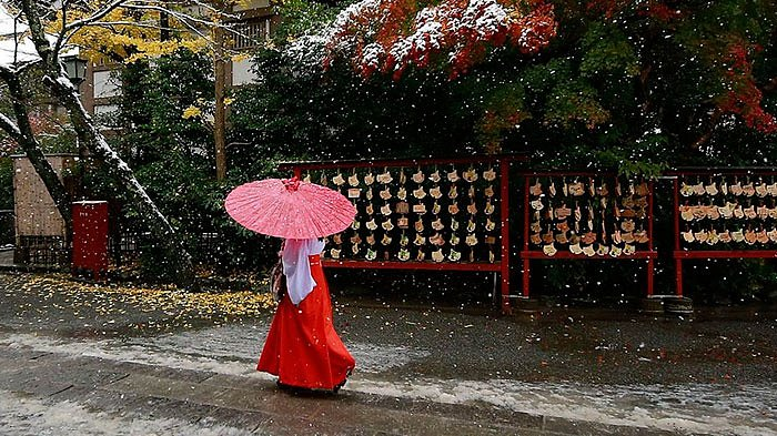 Podzimní barvy kontrastují s padajícími sněhovými vločkami.