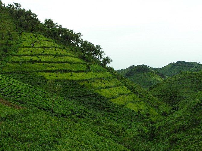 Krajina Bwindi vokolí vesnice, nejvyšší kopce dosahují 1800m.