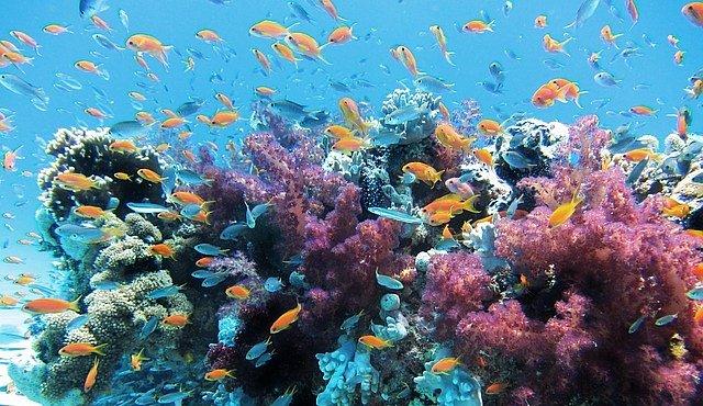Azurové pobřeží nabízí romantiku i okázalý luxus