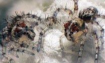 OBRAZEM: Nejlepší mikrofotografie světa za rok 2012. Pod mikroskopem najdete fantazijní svět