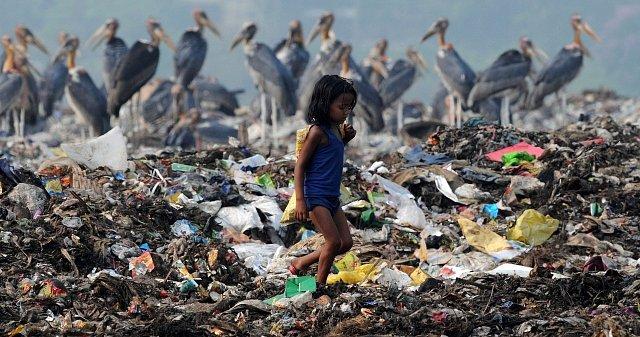 Souboj lidí a obřích ptáků o jídlo