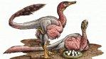 Dinosaurus, který vypadal jako obří krocan. Nový objev argentinských paleontologů