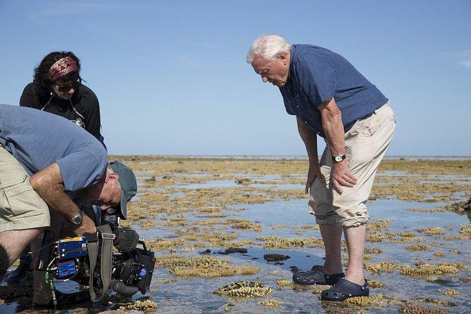 Pomocí animací budou rozpohybovány prastaré světy, aby diváci dostali možnost sledovat zrození prvních korálů a jejich medúzovitých příbuzných ipůsobení ohromných sil, které utvořily Austrálii.