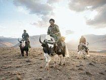 Ve Váchánském koridoru se Sidol (zleva), Žumagul a Asan Chan vracejí na svých jacích z jižních poloh, kde sledovali růst travin. Stáda drží mimo tyto pastviny, aby Váchánci mohli úrodu sklidit, usušit a v zimě pak použít jako krmivo pro zvířata.