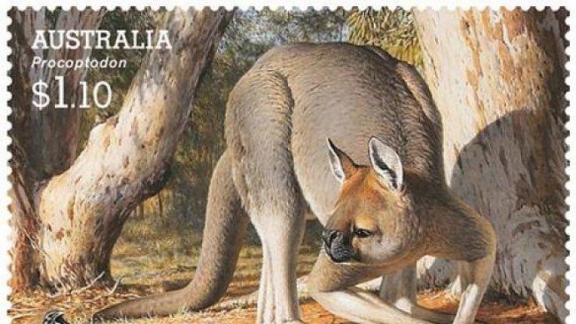 Třímetrové klokany a obří wombaty vyhubil člověk, ne změna klimatu