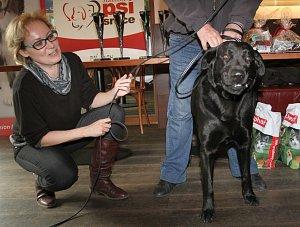 Slavíková předávala cenu v kategorii Záchranný čin neslužebních psů.