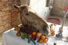 Na hostina nechyběla ani koňská hlava...
