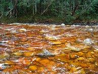Místní řeka