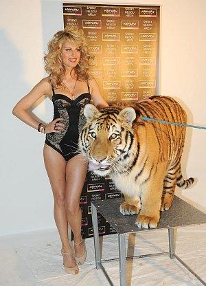 Simona Krainová s tygrem, který budil pořádný respekt.