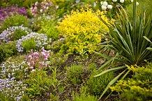 Paní domu miluje květiny, které hrají všemi barvami, kam jen oko pohlédne.