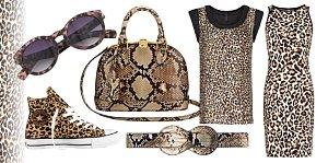leopard M JPG