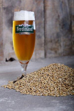 Ferdinand pivo nakupni tip