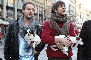 Hvězdy muzikálu Rent, který uvádí Divadlo Kalich, vzaly s sebou i své psí miláčky.