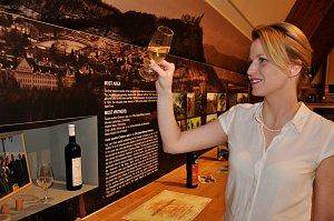 Litoměřice_expozice vín Lenka Gottwaldová nahled