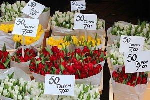 Tulipány na květinovém trhu