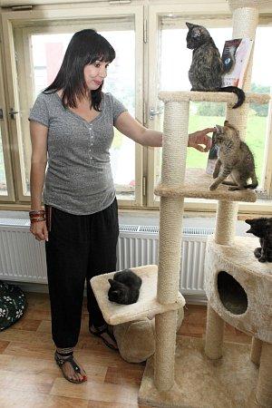 Sama herečka má doma dvě kočky a psa.