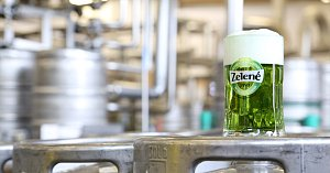 Zelené pivo_na sudu