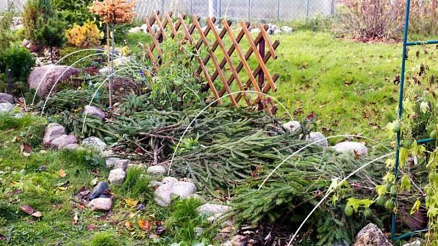 Listopad v zahradě – čas příprav na nový rok