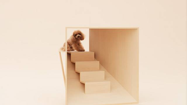 Architecture for Dogs 6