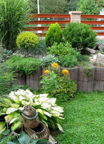 Zahrada plná květin - Chladnější klima severně orientované předzahrádky lépe snáší jehličnany, rododendrony a bohyšky