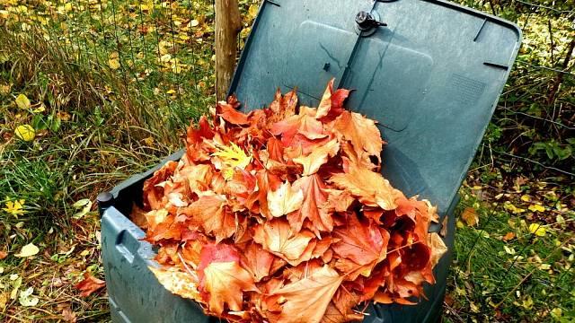 podzimni odpad