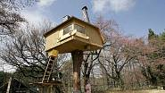 Stromodům v japonské vesnici Hokuto byl stavěný postupně 4 měsíce. Dům je postavený na japonském cypřiši vysokém čtyři metry.