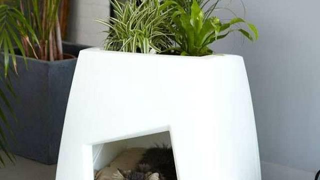 Velmi pěkný nápad je kombinace domečku pro vašeho domácího mazlíčka s místem pro zasazení květiny. Tento multifunkční design působí mladistvě a hravě.