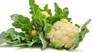 Postřik - zelenina