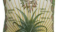 Aloe Vera 50 x 50 cm na www.thepillowshop.cz za 2080 Kč