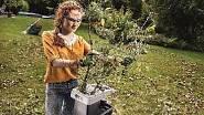 Drtiče větví se dají koupit i v hobbymarketech, jako je například Hornbach.