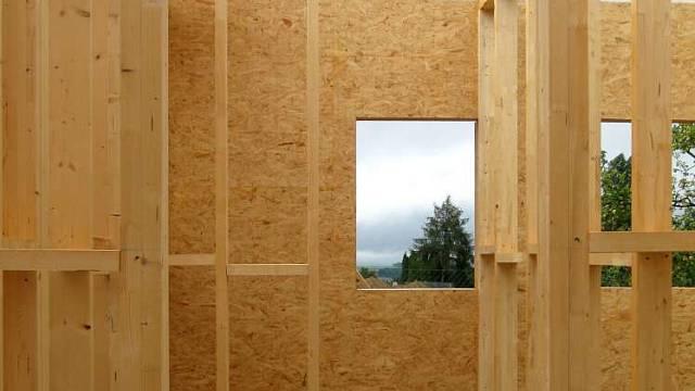 Odolnost dřeva II 5