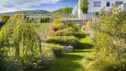 Klikatící se zelený pás trávníku opticky potlačuje úzký a dlouhý pozemek