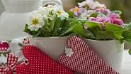 Látková srdíčka jsou něžnou jarní dekorací i milým dárkem ke Dni matek.